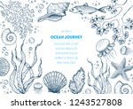 underwater world hand drawn... | Shutterstock .eps vector #1243527808