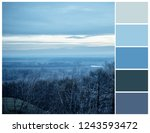 color palette with... | Shutterstock . vector #1243593472