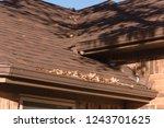 close up rain gutter on... | Shutterstock . vector #1243701625