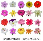 set of floral icon in flat... | Shutterstock .eps vector #1243750372