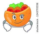 smirking pita bread sandwiches...   Shutterstock .eps vector #1243795558