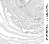abstract black and white... | Shutterstock . vector #1243860988