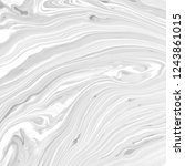 abstract black and white... | Shutterstock . vector #1243861015