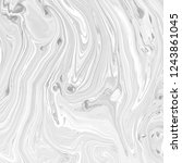 abstract black and white... | Shutterstock . vector #1243861045