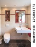 Small photo of roomy toilette with sanitary installations