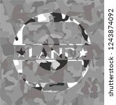 land on grey camouflage texture | Shutterstock .eps vector #1243874092