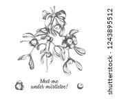 set of hand drawn sketch... | Shutterstock .eps vector #1243895512