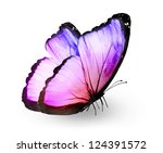 Stock photo color butterfly isolated on white 124391572