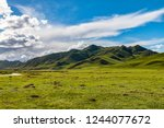 open prairie grasslands in... | Shutterstock . vector #1244077672