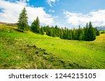 wonderful springtime weather in ...   Shutterstock . vector #1244215105