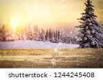 table background and winter...   Shutterstock . vector #1244245408