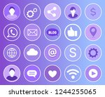 social network signs and... | Shutterstock .eps vector #1244255065