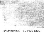 black and white distressed... | Shutterstock .eps vector #1244271322