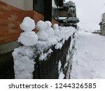 snowy dharma doll | Shutterstock . vector #1244326585
