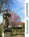 hofgarten eichst ttis a city in ... | Shutterstock . vector #1244359648