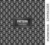minimal geometric pattern... | Shutterstock .eps vector #1244561335