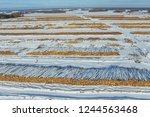 the felled trees lie under the... | Shutterstock . vector #1244563468
