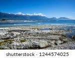 white textured rock seabed with ... | Shutterstock . vector #1244574025