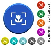 camera macro mode round color... | Shutterstock .eps vector #1244625985