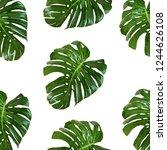 seamless pattern of leaves... | Shutterstock .eps vector #1244626108