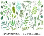 tender green and blue... | Shutterstock . vector #1244636068