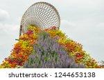 bridge of beautiful flowers to... | Shutterstock . vector #1244653138
