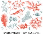 set of vector christmas... | Shutterstock .eps vector #1244653648