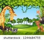 wild animal in nature... | Shutterstock .eps vector #1244684755