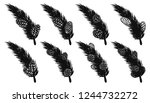 set of pine leaf with pine... | Shutterstock .eps vector #1244732272