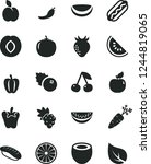 solid black vector icon set  ... | Shutterstock .eps vector #1244819065