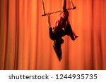 aerial movement of the trapeze | Shutterstock . vector #1244935735