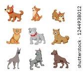vector illustration of various... | Shutterstock .eps vector #1244938012