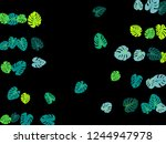turquoise tropical jungle... | Shutterstock .eps vector #1244947978