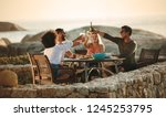 four friends toasting drinks... | Shutterstock . vector #1245253795