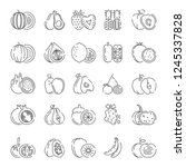fruit icon collection lineart   Shutterstock .eps vector #1245337828