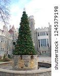 Big Holiday Christmas Tree