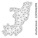polygonal mesh map of republic... | Shutterstock .eps vector #1245446398
