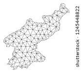 polygonal mesh map of north... | Shutterstock .eps vector #1245448822