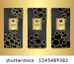set templates for package from...   Shutterstock .eps vector #1245489382