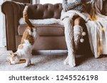 cold autumn or winter weekend... | Shutterstock . vector #1245526198