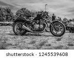 paaren im glien  germany   may... | Shutterstock . vector #1245539608