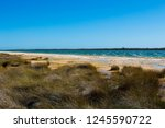 lake clifton south western... | Shutterstock . vector #1245590722