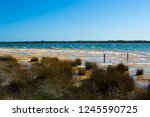 lake clifton south western... | Shutterstock . vector #1245590725