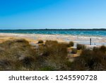 lake clifton south western... | Shutterstock . vector #1245590728