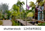 beautiful flower background.... | Shutterstock . vector #1245690832