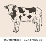 vector illustration of cow  ... | Shutterstock .eps vector #1245750778