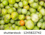 green and red tomato | Shutterstock . vector #1245822742