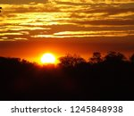 a sunset near the kruger... | Shutterstock . vector #1245848938