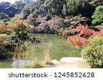 a samurai residence thas's... | Shutterstock . vector #1245852628