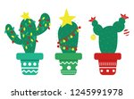 Mexican Christmas Cactus With...